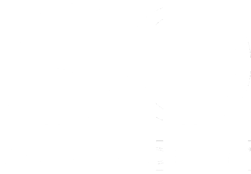 Salon Only Logo Salon Only Splush Online
