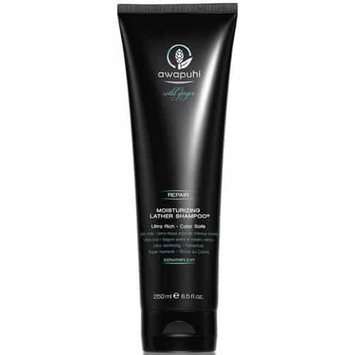 Fc19B5Abb232C4C6E066733032504A89 1 Paul Mitchell Awaphuhi Wild Ginger Moisturizing Shampoo Splush Online